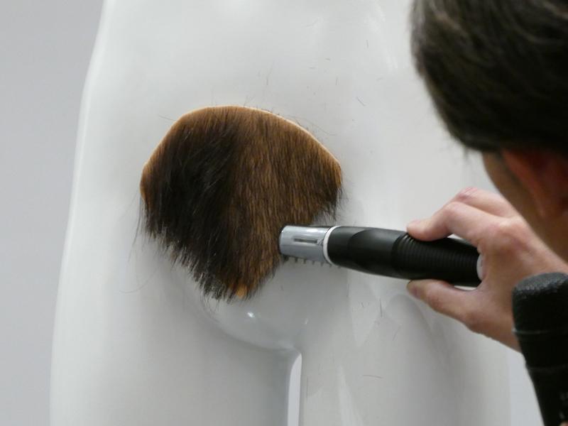 【チン毛】ゲイだったら間違いなくチン毛整えるよな [転載禁止]©bbspink.com->画像>20枚