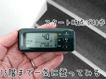 1e900c731f やじうまミニレビュー】日本に本格参入した、海外で人気のスポーツ ...